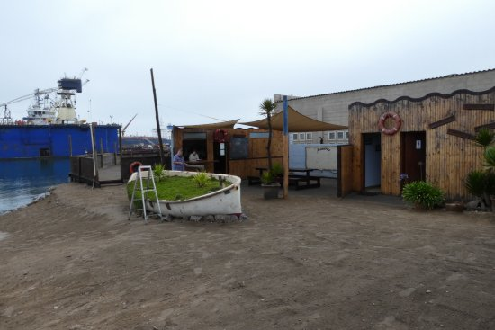 Walvis Bay, Namibia: Reception Levo tours