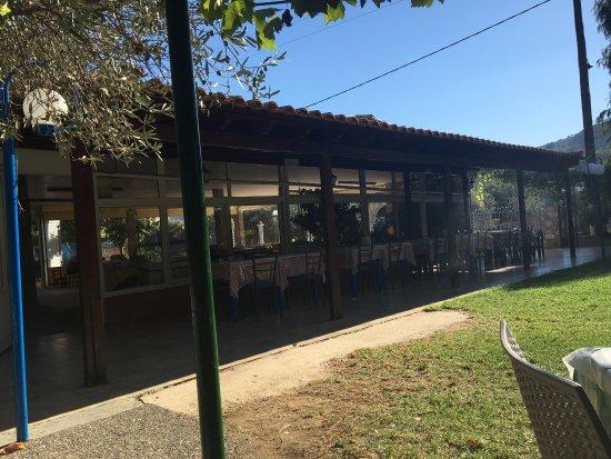 Archangelos, Grécia: Pranzo fine settembre. Capretto alla griglia e insalata greca. Taverna familiare, ottimo servizi