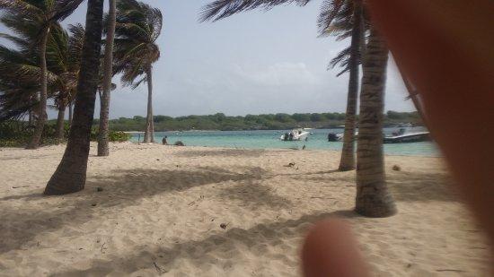 Sainte-Anne, Guadeloupe: excursion avec Tarzan