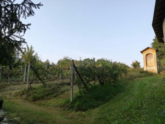 Borgomanero, Италия: Veduta esterna
