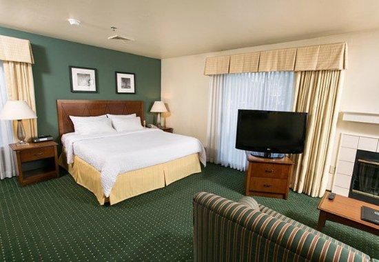 Residence Inn Milwaukee Brookfield: King Studio Suite