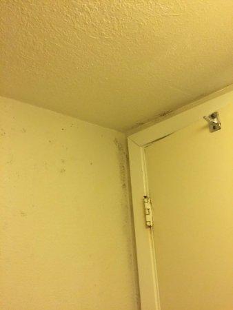 Black mold picture of la quinta inn san antonio i 35 n at toepperwein san antonio tripadvisor - Black mold in bathroom wall ...