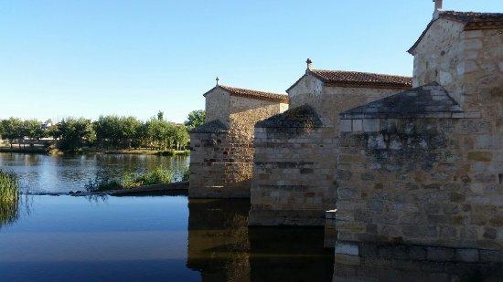 Acenas de Olivares: 20160927_183508_large.jpg
