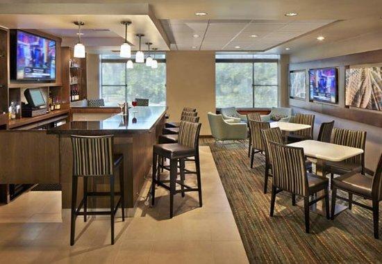 Conshohocken, بنسيلفانيا: Bar & Lounge