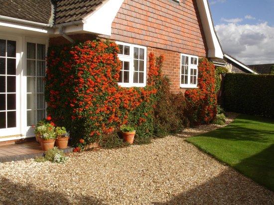 Saxilby, UK: Autumn Colours