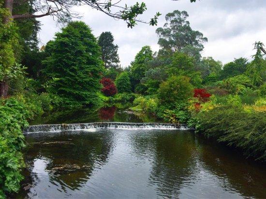 Ashford, Irlande : photo1.jpg