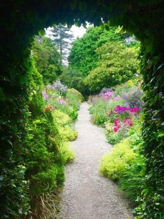 Ashford, Irlande : photo3.jpg