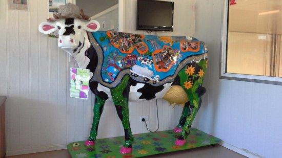 Atherton, Australia: Gallo Dairyland