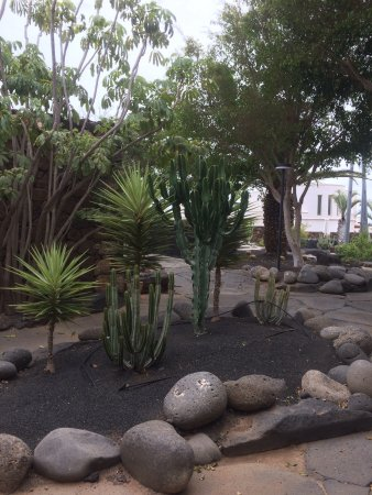Hotel Villa VIK: Villa Vik Arrecife Lanzarote