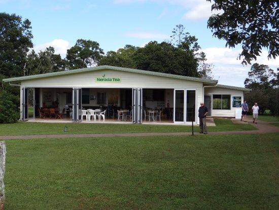 Atherton, Australia: Nerada Tea House