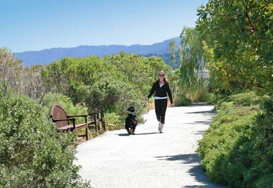 Redwood City, Californie : Bay Walking Trail