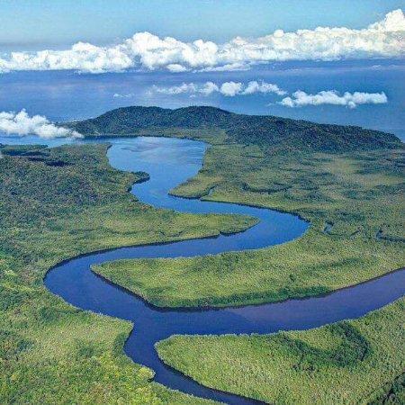 Sierpe, Costa Rica: Vista aérea de Isla Violin