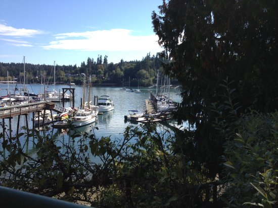 Bainbridge Island, WA: View from the patio