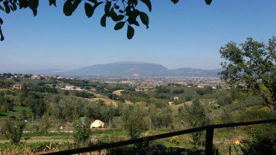 몬테팔코 사진