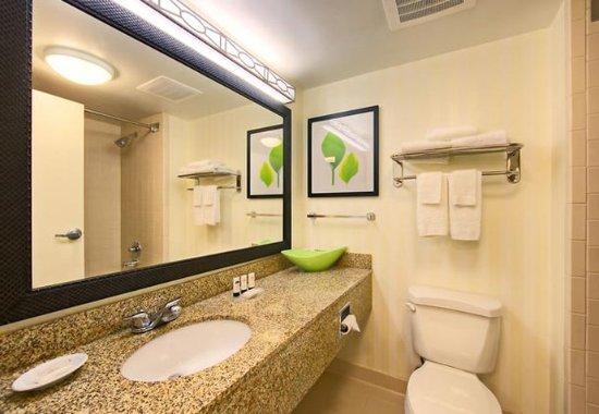 Oxford, AL: Guest Bathroom