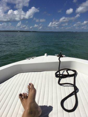 Tavernier, FL: photo3.jpg