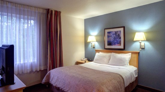 Round Rock, TX: Single Bed Guest Room
