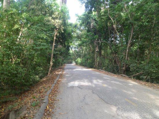 Parque Nacional Natural Tayrona: camino hacia el parqueadero