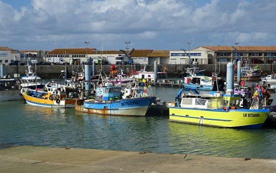 Saint-Pierre-d'Oleron, Francia: Le Port de la Cotinière
