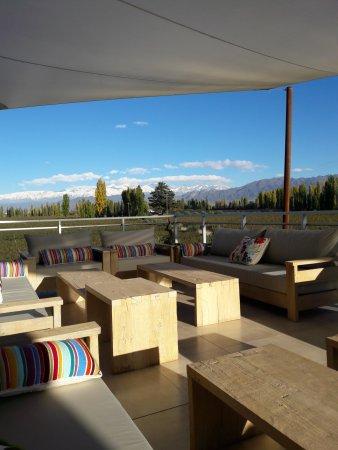 Lujan de Cuyo, Αργεντινή: Terraza Norte, disponible para degustación al aire libre