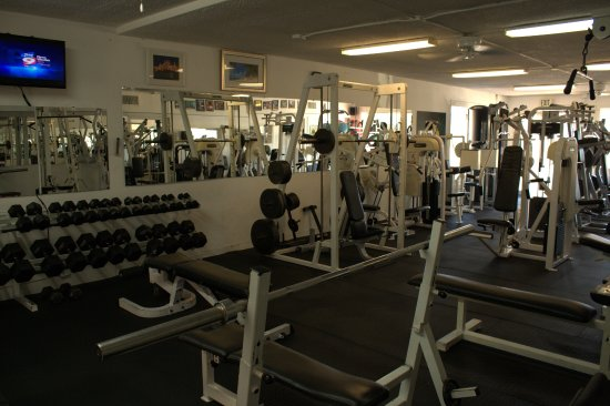 Beach Bods Gym Dumbbells To 140lbs And A Great Selection Of Bars