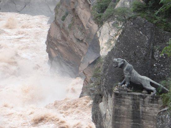 Shangri-La County, China: le tigre prêt à sauter rive gauche !