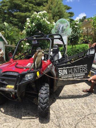 Saint George Parish, Grenada: Sun Hunters