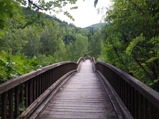 Castellfollit de la Roca, España: Puente del rio