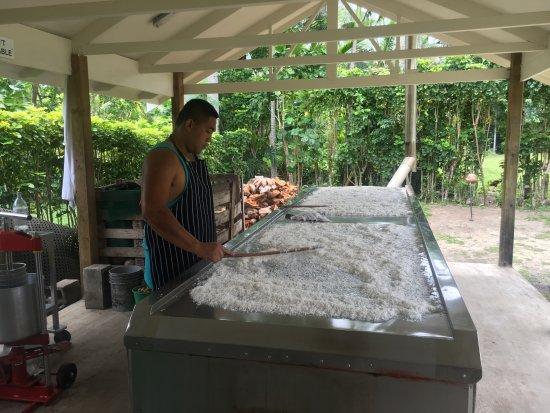 Arorangi, Islas Cook: coconut oil