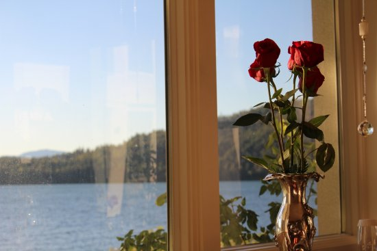 Dover, ID: Anniversary roses and view from our suite
