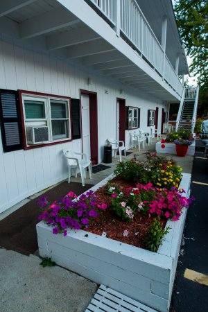 Willows Motel: Room's Exterior