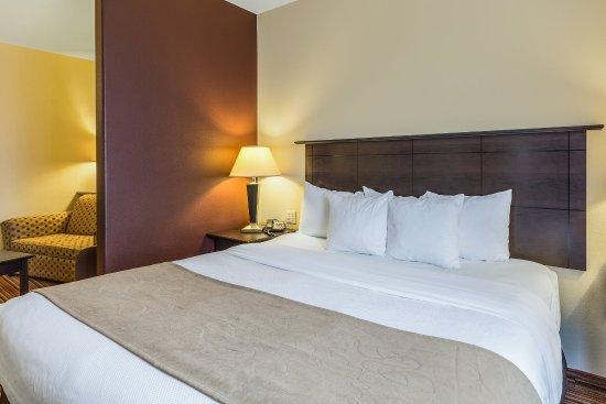 Comfort Suites Alexandria: Guest Room