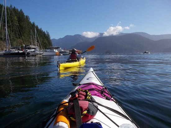 Deep Cove Kayak: photo2.jpg