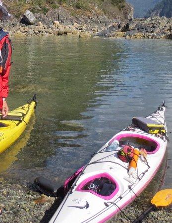 Deep Cove Kayak: photo5.jpg