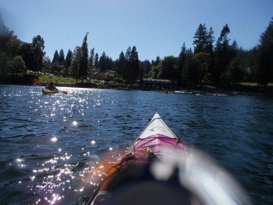 Deep Cove Kayak: photo6.jpg
