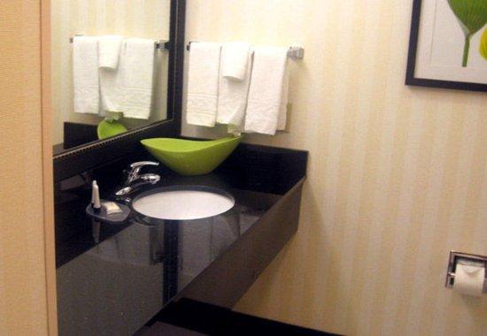 Carlisle, PA: Guest Bathroom