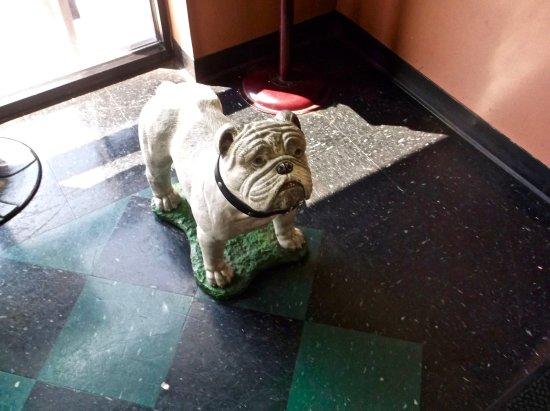 พูเลอร์, จอร์เจีย: Mascot