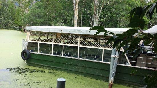 Palm Cove, Australia: O passeio foi feito neste barco