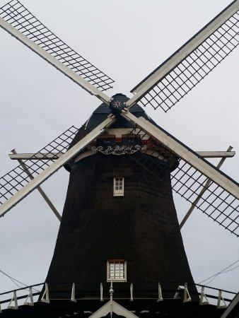 Amstelveen, Paesi Bassi: 20160929_184704_large.jpg