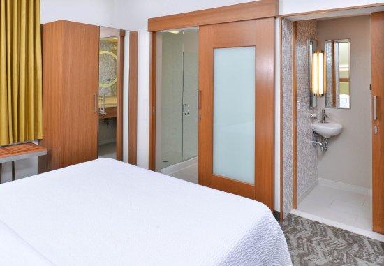 Romulus, MI: King Studio Suite - Private Shower