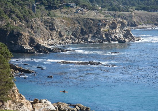 Jenner, CA: Timber Cove View