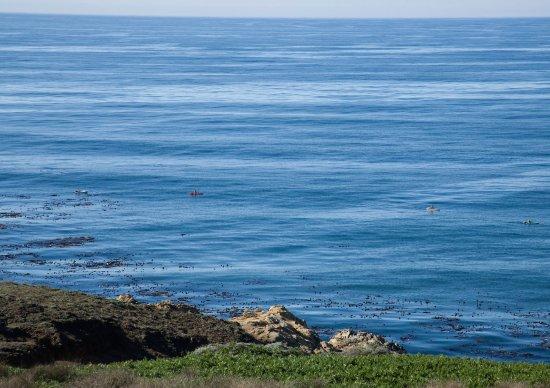 Jenner, Kalifornien: Ocean View