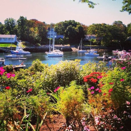 Perkins Cove: Beautiful area. Grab a bite, enjoy the view and take a walk on Marginal Way