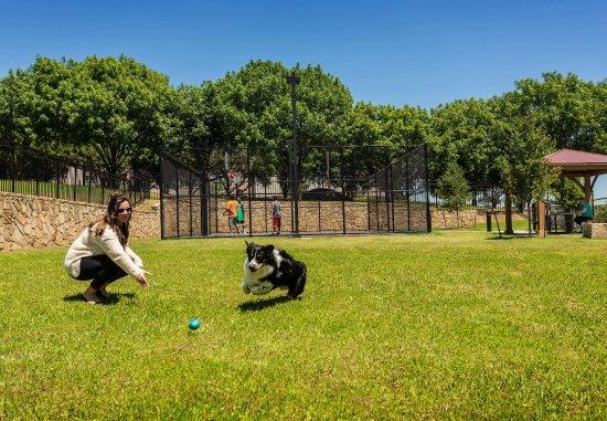Lewisville, Τέξας: Outdoor Dog Run