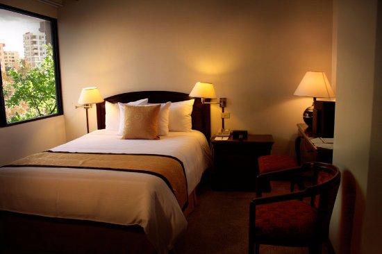 Hotel Sebastian: Estándar Single:  cama full XL size, TV por cable, wifi, calentador.