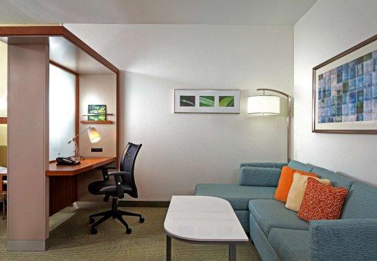 Эшберн, Вирджиния: Studio Suite - Living Area