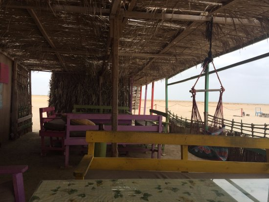 Masirah Island, Oman: Masirah beach camp