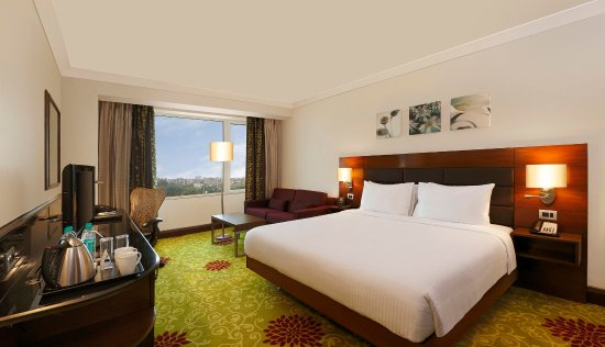 Hilton Garden Inn New Delhi / Saket: King Room