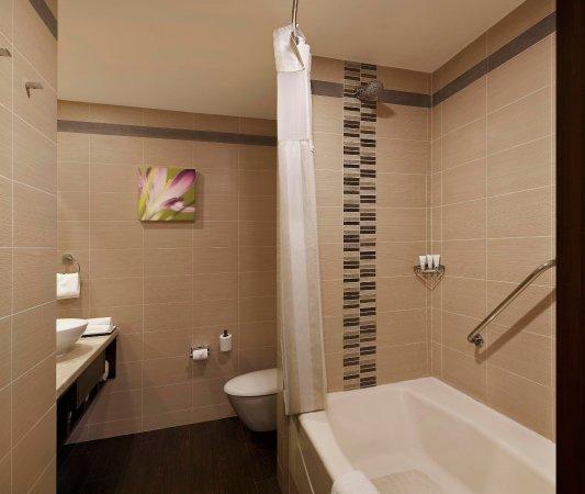 希爾頓新德里薩凱特花園酒店照片