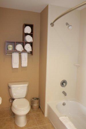 Folsom, CA: Bathroom
